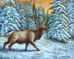 Winter Elk
