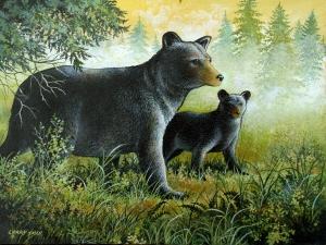 Foggy Morning Bears