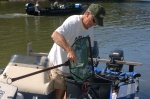 Joe Houck placing muskies into his boat.