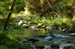 Cowanshannock Creek