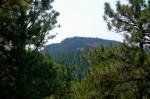 More Black Hills!