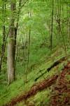 The terrain I may be climbing!