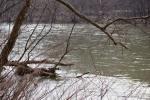 Kiski River
